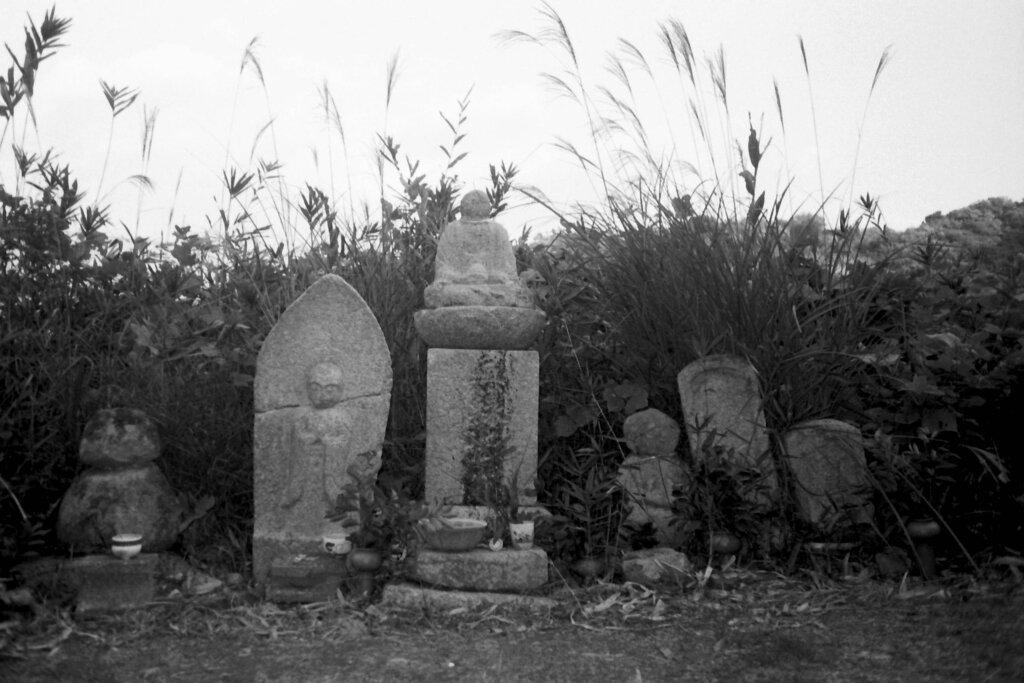 遍路道の石仏たち